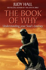Judy Hall The Book of Why